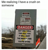 Crush, Lol, and Memes: Me realizing I have a crush on  someone  DANGER  HIGH VOLTAGE  DANGER  소  DANGER  NOT ONLY WILL  THIS KILL YOU  IT WILL HURT  THE WHOLE TIME  YOU'RE DYING Lol