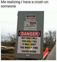 Crush, Memes, and Time: Me realizing I have a crush on  someone  DANGER  HIGH VOLTAGE  A DANGER  DANGER  NOT ONLY WILL  THIS KILL YOU  IT WILL HURT  THE WHOLE TIME  YOU'RE DYING 💦💦💦