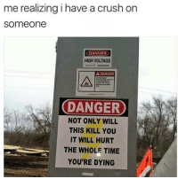 Crush, Time, and Vines: me realizing i have a crush on  someone  DANGER  HIGH VOLTAGE  A DANGER  소  DANGER  NOT ONLY WILL  THIS KILL YOU  IT WILL HURT  THE WHOLE TIME  YOU'RE DYING @vines is a must follow
