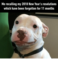 9gag, Memes, and New Year's Resolutions: Me recalling my 2018 New Year's resolutions  which have been forgotten for 11 months Yeah...that didn't work out too well. -⠀ newyearresolution newyearsameme 9gag