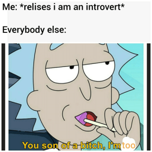 Reddit= a bounch of introverts together: Me: *relises i am an introvert*  Everybody else:  You son of a bitch, I'mtoo Reddit= a bounch of introverts together