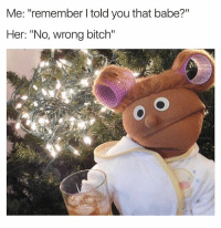 """Bitch, Dank Memes, and Justgirlythings: Me: """"remember I told you that babe?""""  Her: """"No, wrong bitch"""" If She Don't Remember, Don't Try To Remind Her..😩 JustGirlyThings"""