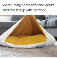 Home, World, and One: Me returning home after one lecture,  tired and fed up with the world