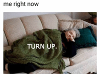 Funny, Lol, and Turn Up: me right now  TURN UP. Me rn lol