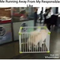 Funny, Time, and Video: Me Running Away From My Responsible  Like  #hood clips  Made With  Viva Video Me all the time when it comes to Responsibility 😂