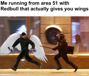 Meme, Wings, and Running: Me running from area 51 with  Redbull that actually gives you wings  r/dankmemes  /JKdoe we must revive this meme immediately!