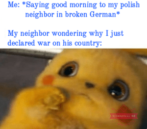 Memes, Good Morning, and Good: Me: *Saying good morning to my polish  neighbor in broken German*  My neighbor wondering why I just  declared war on his country:  u/babydoll bd Meine Entschuldigung ist enorm. via /r/memes https://ift.tt/2LFgOga