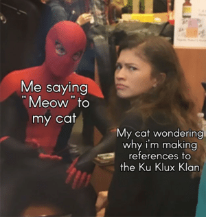 Meow meow: Me saying  Meow to  my cat  My cat wondering  why i'm making  references to  the Ku Klux Klan Meow meow