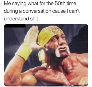 Meirl: Me saying what for the 50th time  during a conversation cause I can't  understand shit Meirl