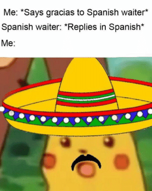 76 Dank Memes To Help You Laugh Your Troubles Away: Me: *Says gracias to Spanish waiter*  Spanish waiter: *Replies in Spanish*  Me: 76 Dank Memes To Help You Laugh Your Troubles Away