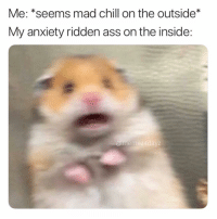 Ass, Chill, and Memes: Me: *seems mad chill on the outside  My anxiety ridden ass on the inside:  @mem  ez4dayz Me. Always.