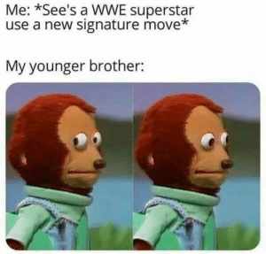 wwe superstar: Me: *See's a WWE superstar  use a new signature move*  My younger brother: