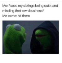 Memes, Quiet, and 🤖: Me: sees my siblings being quiet and  minding their own business  Me to me: hit them Lmfao