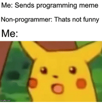 Friends, Funny, and Meme: Me. Sends programming meme  Non-programmer: Thats not funny  Me:  imgflip.com When you send programming meme to your friends