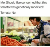 Genetically: Me: Should I be concerned that this  tomato was genetically modified?  Tomato: No.