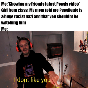 Cant win them all over: Me: Showing my friends latest Pewds video  Girl from class: My mom told me Pewdiepie is  a huge racist nazi and that you shouldnt be  watching him  Me:  Idont like you Cant win them all over
