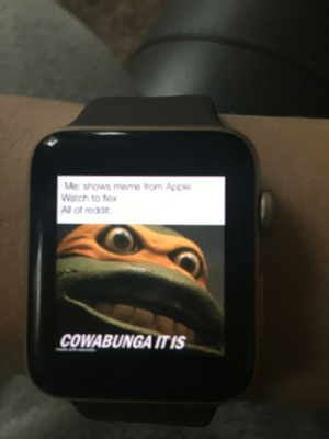 Apple, Apple Watch, and Flexing: Me: shows meme from Apple  Watch to fiex  All of reddit  COWABUNGA ITIS Flex
