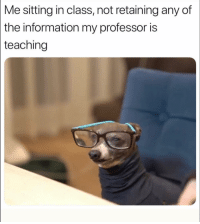 Funny, Lol, and Information: Me sitting in class, not retaining any of  the  information my professor is  teaching Lol 😂