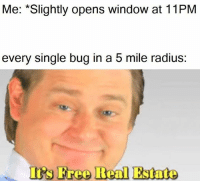 Irs, Free, and Image: Me: *Slightly opens window at 11PM  every single bug in a 5 mile radius  Irs Free Real Estate I can hear the image