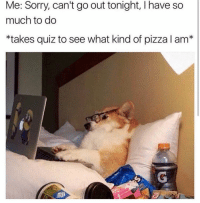 Memes, Pizza, and Sorry: Me: Sorry, can't go out tonight, I have so  much to do  *takes quiz to see what kind of pizza I am*