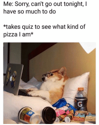 Funny, Lol, and Pizza: Me: Sorry, can't go out tonight,I  have so much to do  *takes quiz to see what kind of  pizza l am* Same lol