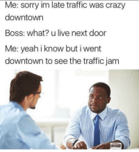 traffic jam: Me: sorry im late traffic was crazy  downtown  Boss: what? u live next door  Me: yeah iknow but i went  downtown to see the traffic jam