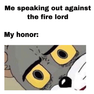 Fire, Memes, and Avatar: Me speaking out against  the fire lord  My honor: Avatar memes require a refined taste