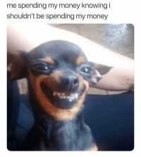 Memes, Money, and 🤖: me spending my money knowing i  shouldn't be spending my money This is fine 😅😬