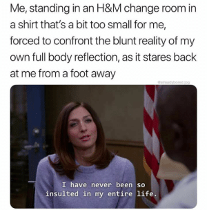 Funny, Life, and Memes: Me, standing in an H&M change room in  a shirt that's a bit too small for me,  forced to confront the blunt reality of my  own full body reflection, as it stares back  at me from a foot away  Galreadybored.jpg  I have never been so  insulted in my entire life. 44 Funny Memes For You If You Desperately Need A Laugh - JustViral.Net