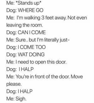 Animals, Memes, and Wat: Me: *Stands up*  Dog: WHERE GO  Me: I'm walking 3 feet away. Not even  leaving the room.  Dog: CAN I COME  Me: Sure.. but I'm literally just-  Dog: I COME TO0  Dog: WAT DOING  Me: I need to open this door.  Dog: I HALP  Me: You're in front of the door. Move  please.  Dog: I HALP  Me: Sigh Dog Memes Of The Day 32 Pics – Ep50 #animalmemes #dogmemes #memes - Lovely Animals World