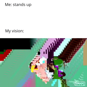 Meirl: Me: stands up  My vision: Meirl