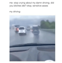 Funny, Sensitive, and Did You Die: me: stop crying about my damn driving. did  you bitches die? okay. sensitive asses  my driving But did you die though?