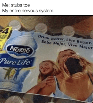 *screaming*: Me: stubs toe  My entire nervous system:  ¥4  Drink Better. Live Better.  Bebe Mejor. Vive Mejor  ALUE  Nestle  Pure Life *screaming*