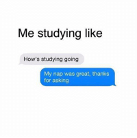 😂😂😂: Me studying like  How's studying going  My nap was great, thanks  for asking 😂😂😂