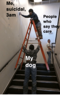 More hot OC for you to invest in, don't jump off a cliff, this meme will give you a lift! via /r/MemeEconomy http://bit.ly/2BweoJQ: Me,  suicidal  3am  People  who  say they  care  My  dog More hot OC for you to invest in, don't jump off a cliff, this meme will give you a lift! via /r/MemeEconomy http://bit.ly/2BweoJQ