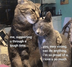 https://t.co/uOM8ZsJL6B: me, supporting  u through a  tough time  you, very strong,  can do anything,  i'm so proud of u,  i love u so much https://t.co/uOM8ZsJL6B