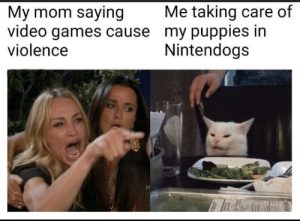 Video games are definitely the problem: Me taking care of  My mom saying  video games cause my puppies in  violence  Nintendogs Video games are definitely the problem