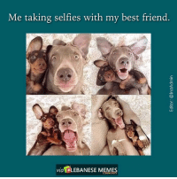 Tag your best friend! InstAdmin LebaneseMemes: Me taking selfies with my best friend.  via LEBANESE MEMES Tag your best friend! InstAdmin LebaneseMemes