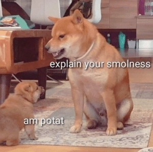 Me talking to the French fries I just got: Me talking to the French fries I just got