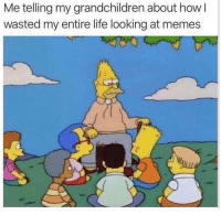 😂 BVIP is back!: Me telling my grandchildren about how I  wasted my entire life looking at memes  2 😂 BVIP is back!