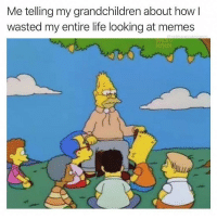 Life, Meme, and Memes: Me telling my grandchildren about how  wasted my entire life looking at memes My life summed up in a meme @cabbagecatmemes
