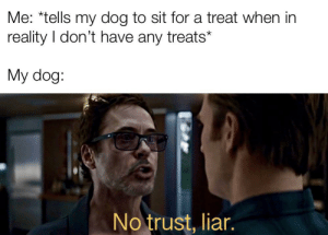 Cosmo the spacedog: Me: *tells my dog to sit for a treat when in  reality I don't have any treats*  My dog:  No trust, liar. Cosmo the spacedog
