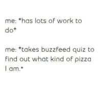 Memes, Pizza, and Work: me-thas lots of work to  do*  me: *takes buzzfeed quiz to  find out what kind of pizza