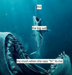 "awesomacious:  There's always a bigger fish: me  the big sad  my crush when she says ""hi"" to me awesomacious:  There's always a bigger fish"
