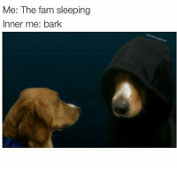 Fam, Memes, and Banana: Me: The fam sleeping  Inner me: bark So today instead of packing the banana bread I packed my grandmothers oats bread which was really dry but now I have a whole pan of banana bread for myself ≪sam≫