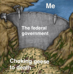 me irl by KABAR_in_the_gay_bar FOLLOW HERE 4 MORE MEMES.: Me  The federal  government  Choking geese  to death me irl by KABAR_in_the_gay_bar FOLLOW HERE 4 MORE MEMES.
