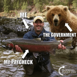 Memes, Government, and 🤖: ME  THE GOVERNMENT  MY PAYCHECK  STURNING  POINT USA #BigGovSucks