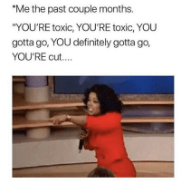 "Bitch, Definitely, and Memes: Me the past couple months.  ""YOU'RE toxic, YOU'RE toxic, YOU  gotta go, YOU definitely gotta go,  YOU'RE cut... Bitch, bye. Follow my doll face @northwitch69 @northwitch69 @northwitch69 @northwitch69"