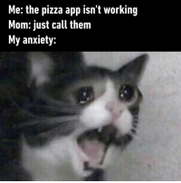 Dank, Food, and Phone: Me: the pizza app isn't working  Mom: just call them  My anxiety: Would you rather make the phone call or opt for other food?