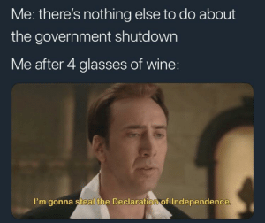 Let's steal it guys by vashtanerada82 FOLLOW 4 MORE MEMES.: Me: there's nothing else to do about  the government shutdown  Me after 4 glasses of wine:  I'm gonna steal the Declaration of Independence. Let's steal it guys by vashtanerada82 FOLLOW 4 MORE MEMES.